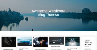 Top 12 WordPress Blog Themes & Plugins for You
